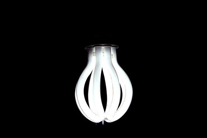 Energooszczędne lampy uprawne